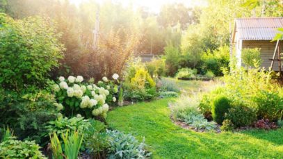 How to Prepare Your Garden for This Autumn